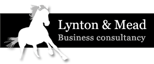 Lynton & Mead Business consultancy